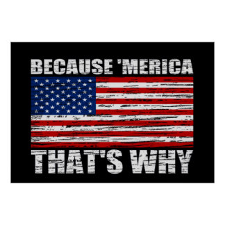 because_merica_thats_why_us_flag_poster_large-raad8f53405bb4542ae098d89e2fe581f_8ep1d_8byvr_324